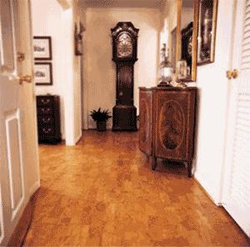 Cork Plank Flooring Product Overview Articles Guide