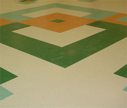 Vinyl Composition Tile (VCT) : Siler City, NC